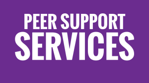 Highlights: Peer Support Services